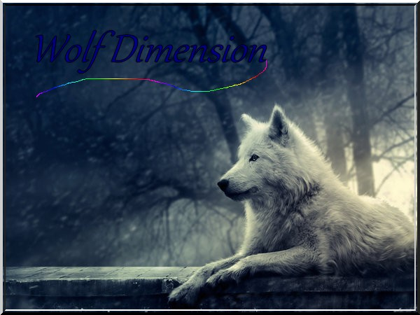 Wolf Dimension