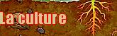 Warpedia 655899Sanstitre3