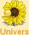 Little dude sunshine - ALTAÏR 656143iconsunflo1