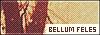 Bellum Feles