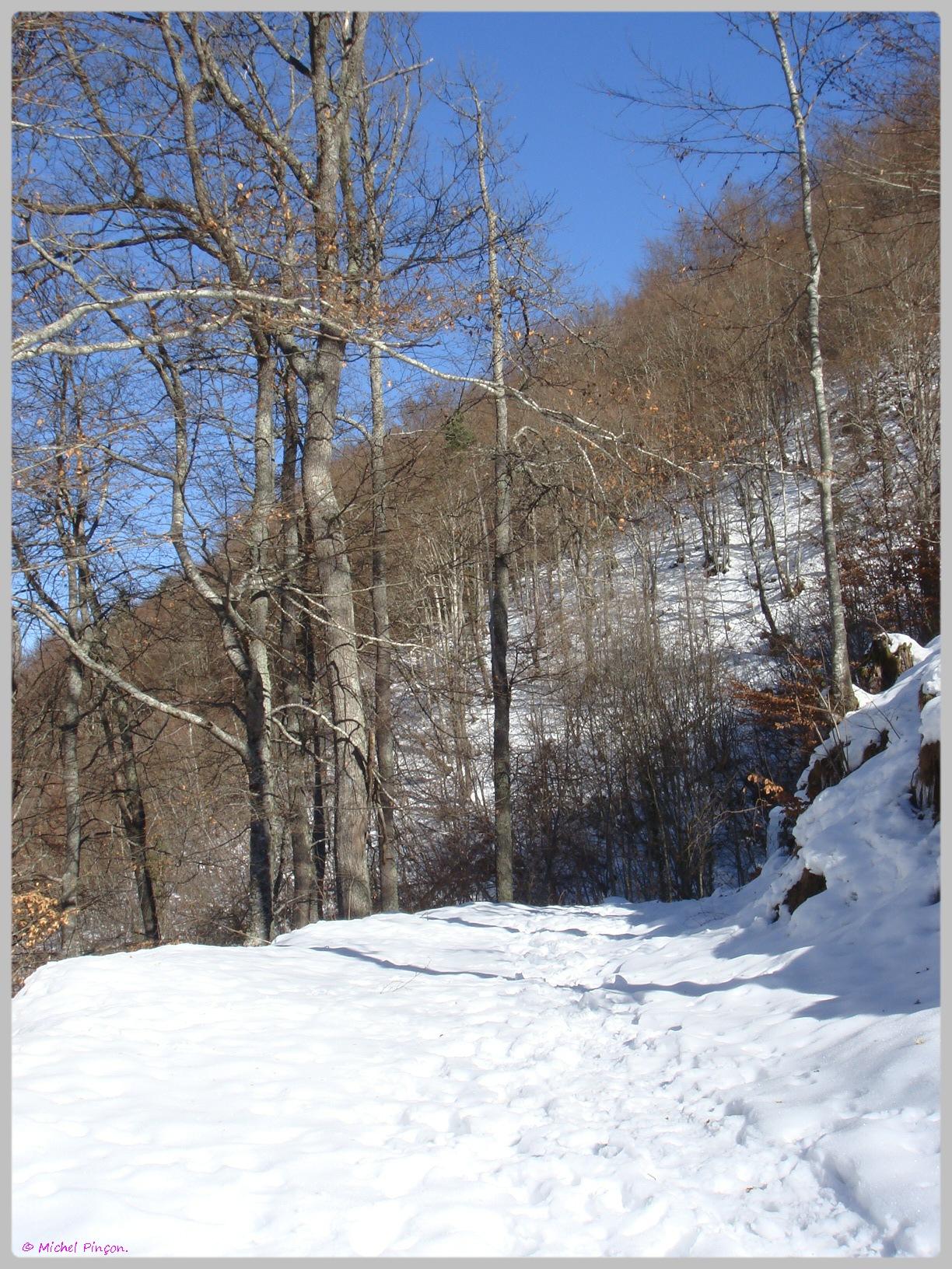 Une semaine à la Neige dans les Htes Pyrénées - Page 2 658160DSC011906