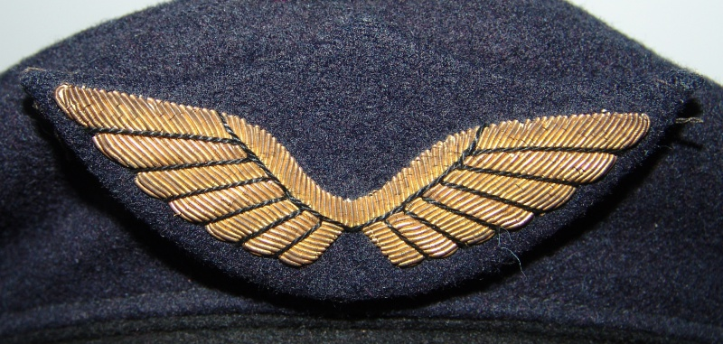 Insigne de casquette armée de l'air 661008DSC08980