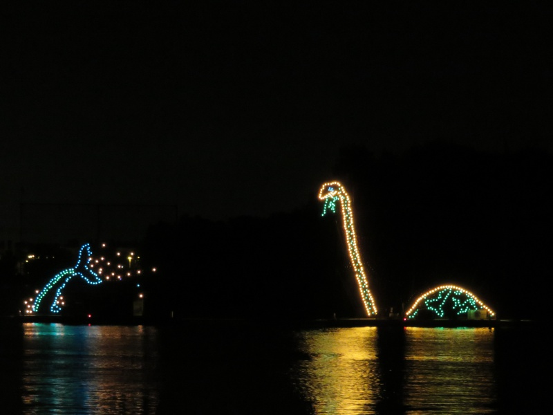 Walt Disney World + Universal Studios + Sea World + Busch Gardens Summer 2014 - Page 6 662359IMG1262