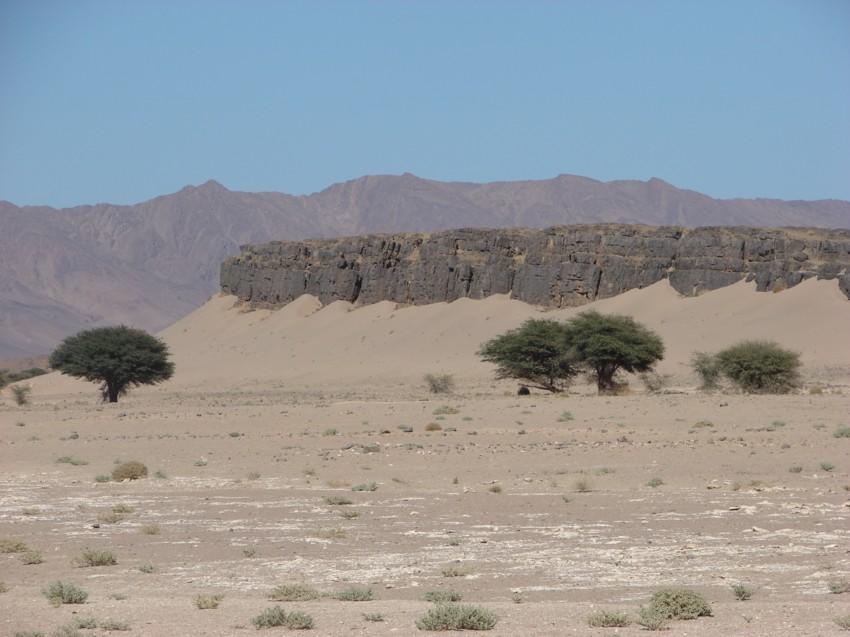 Le Grand Sud du Maroc - II 663361119