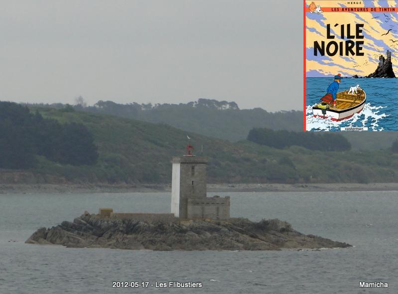 Phares de l'Île Louët et de l'Île Noire 665236TintinetlleNoireetlavraieleNoire