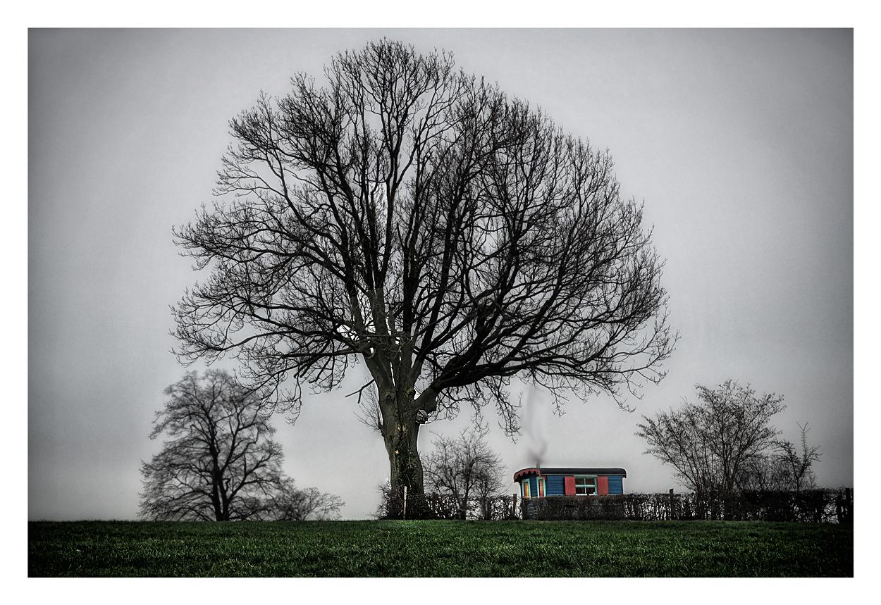 L'arbre et la roulotte. 672649baraque1bis