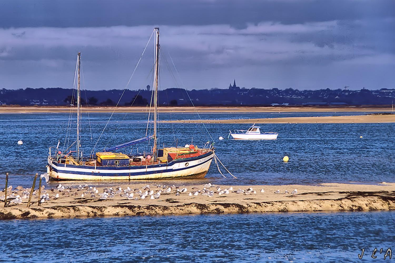 [Activité hors Marine des ports] LE CROISIC Port, Traict, Côte Sauvage... - Page 8 67370201LeNarvaldansletraicten2009