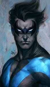 I'm Batm... Batgirl ! 676294Nightwing