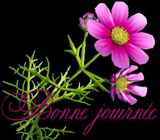 Bonjour/bonsoir de Janvier - Page 4 6775549853658b2fdb7b