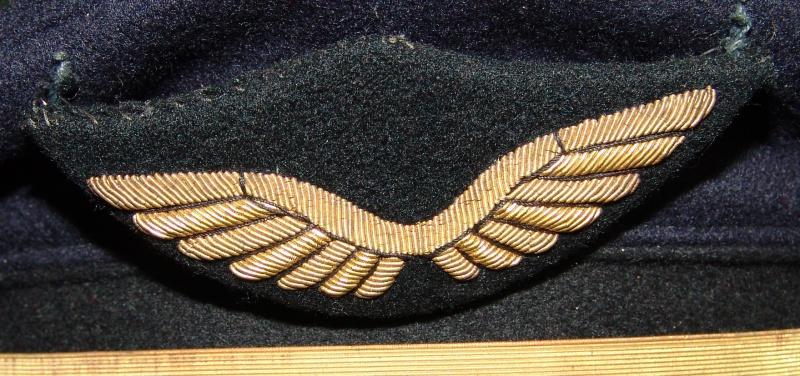 Insigne de casquette armée de l'air 678172DSC08969