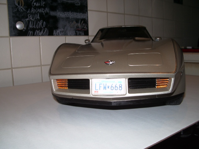 chevrolet corvette 1982 edition collector monogram au 1/8 - Page 2 678370photoscorvettefini116