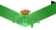 Dominant Tortuga
