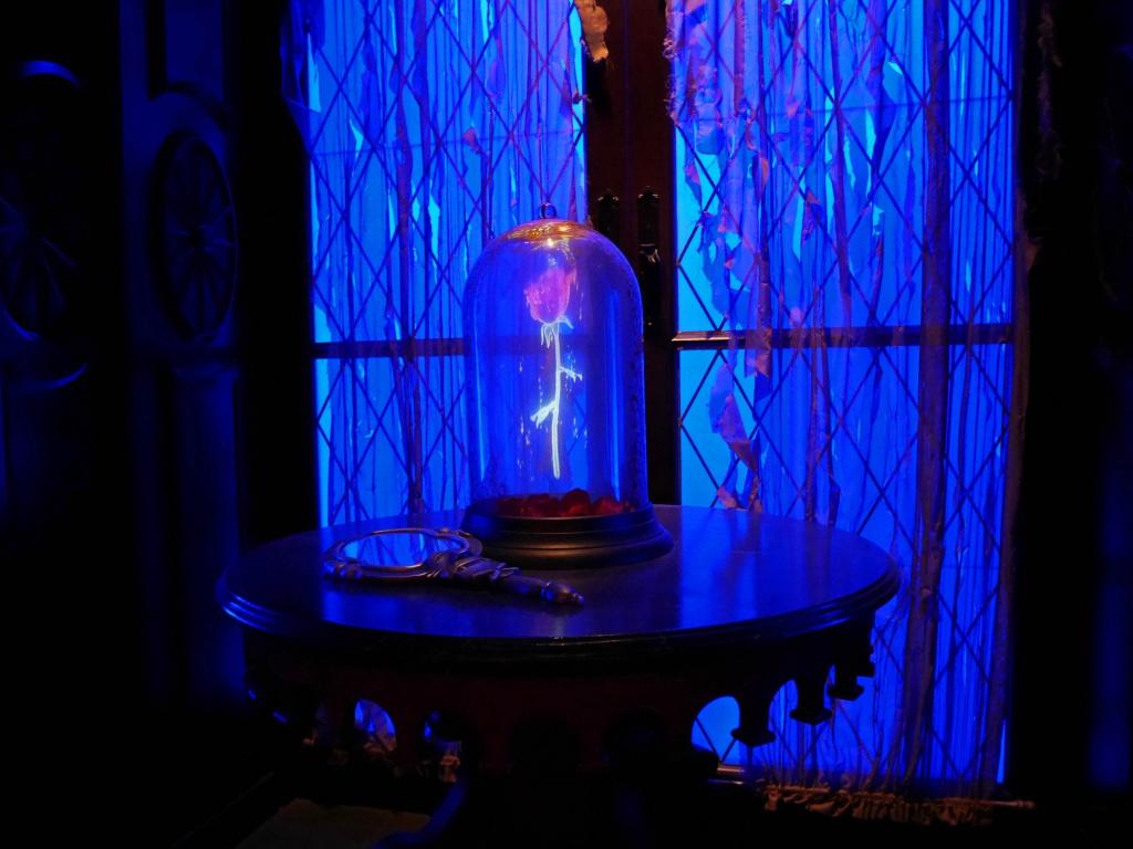 Une lune de miel à Orlando, septembre/octobre 2015 [WDW - Universal Resort - Seaworld Resort] - Page 5 686814P1020100