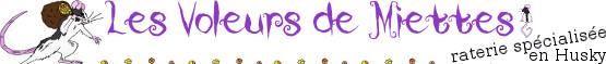 Les dodos en Promo de Femmie ! 688895LesVoleursdeMiettesbannire