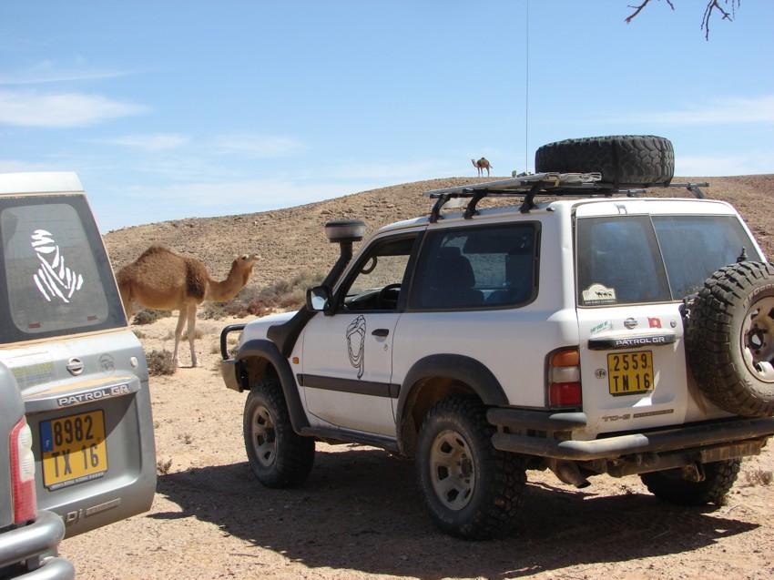 Le Grand Sud du Maroc - II 692400039