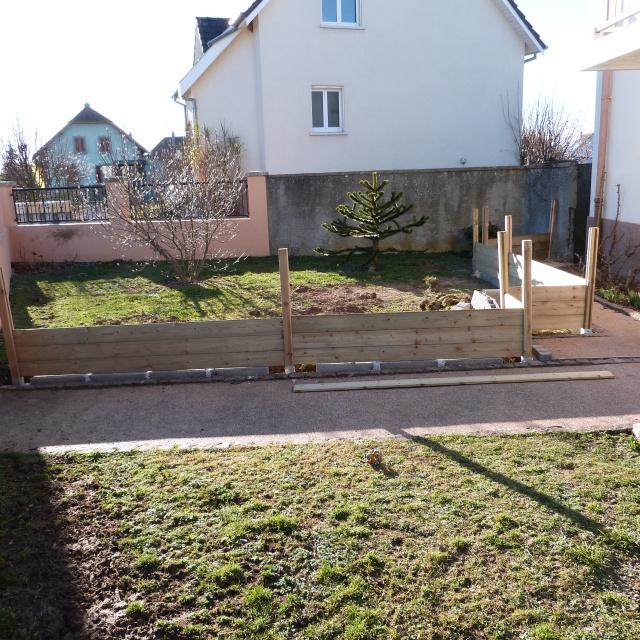 nouveau parc pour ma troupe de horsfieldii - Page 2 695349P1050242