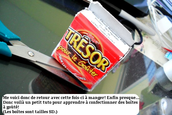 Le Bric à Brac de Chloé. Mini tuto p.3 699385SDC15566