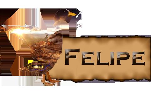 Nombres con F 7005004Felipe
