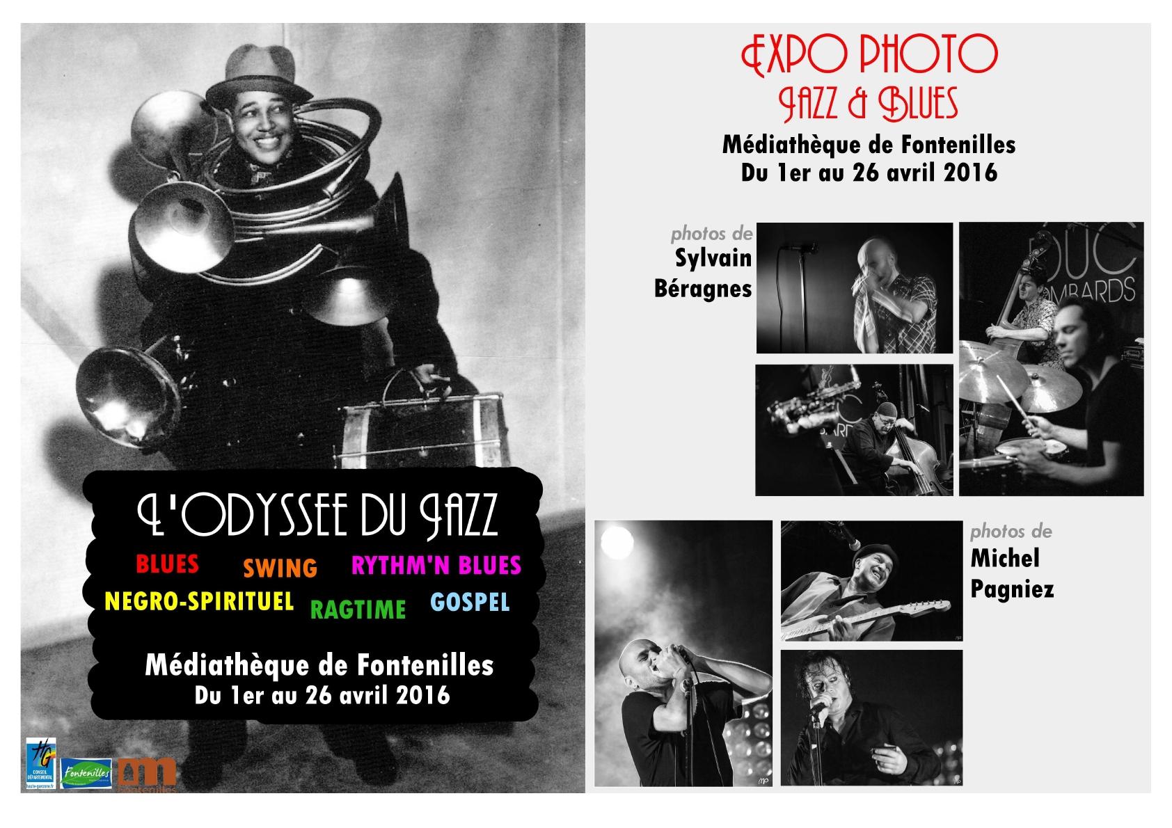 expos photos de concerts 701527Affichebluesjazz