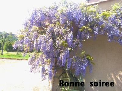 Bon Mercredi 702551d627b7f21aa72954149db7d71143dbeb
