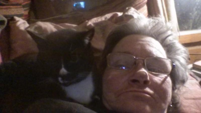 DUCHESSE - chatte femelle, née 2011/2012, borgne - (PASCANI) - adoptée par Chantal Pascal (dpt 63) - Page 5 706288PussyCatdortacotdematte