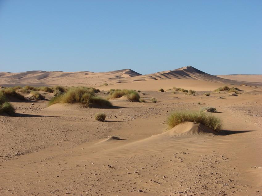 retour Maroc octobre 2013 - Page 2 708883030