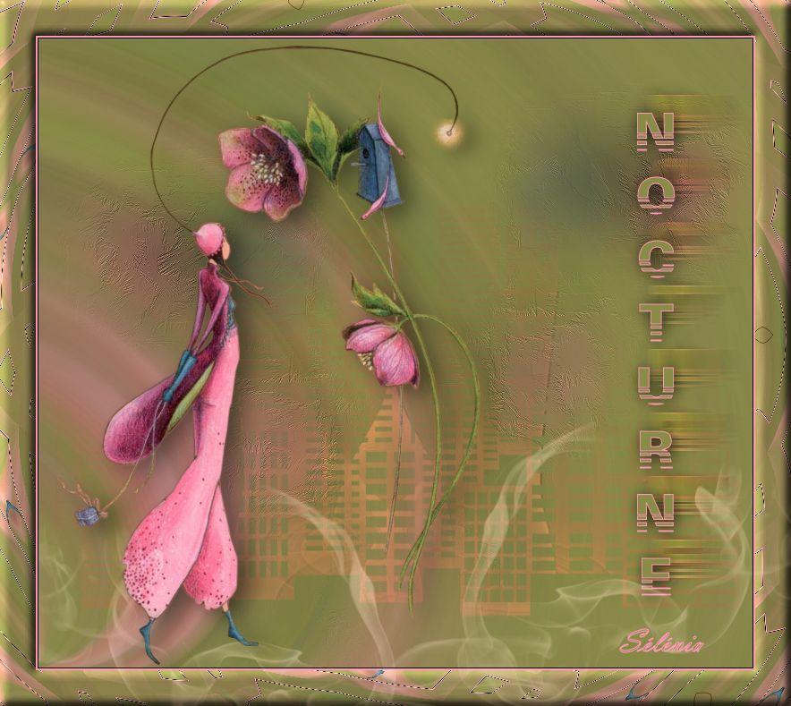 10-Cours Psp-Nocturne 716041cours10