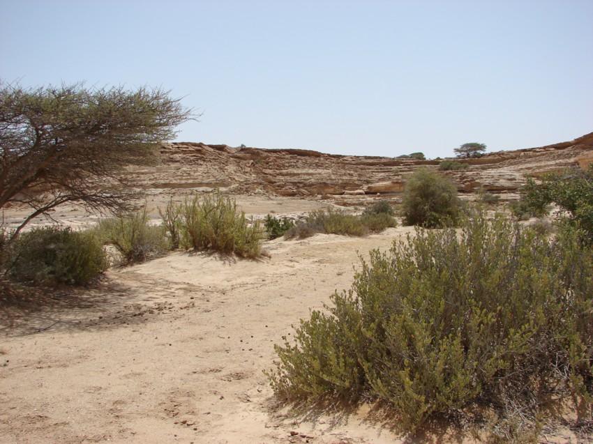retour maroc avril 2013 717266028