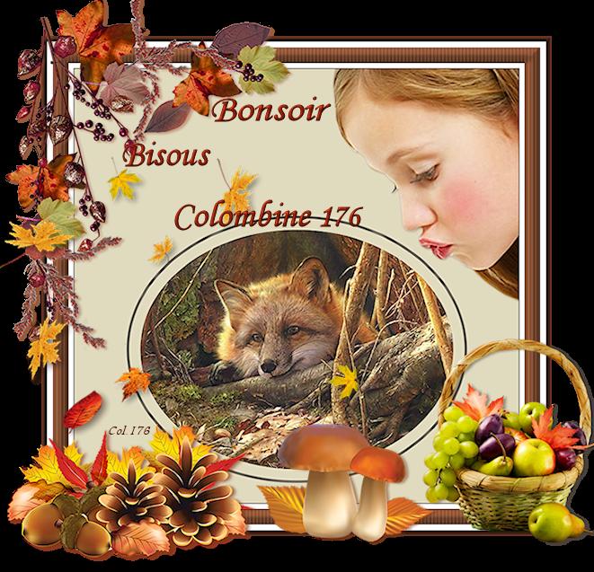 BONNE SOIREE DE DIMANCHE ET DOUCE NUIT 719874GirlFoxBonsoir