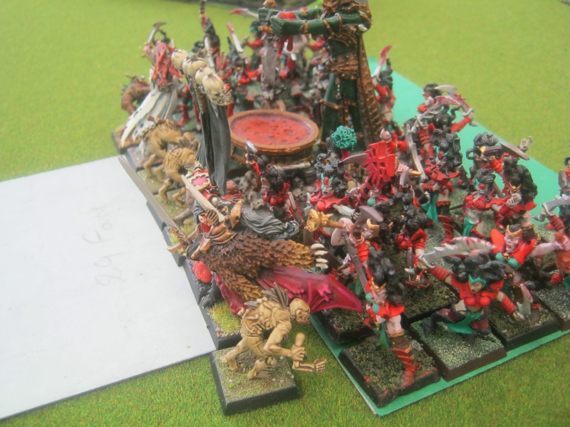 Méga bataille en 3 parties, pour une mini campagne 720628IMG1451