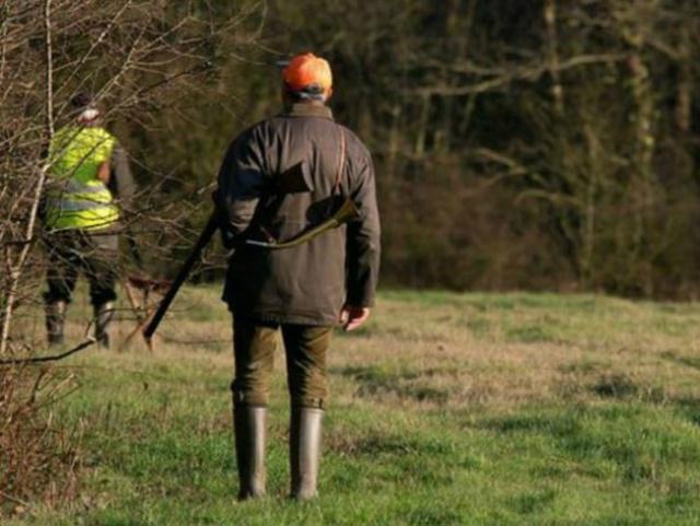 Aveyron : une femme tuée dans son jardin par un chasseur 723735chasse