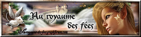 Au royaume des fées ... 725299logoduroyaume
