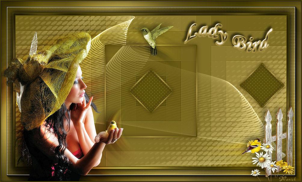 Lady-bird(Psp) 726894lady