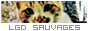Nouveau forum || Refusé 729030LGDSAUVAGES