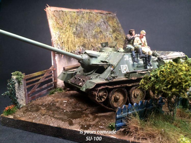 SU-100 marque Dragon 1/35 - Page 3 729119IMG4095