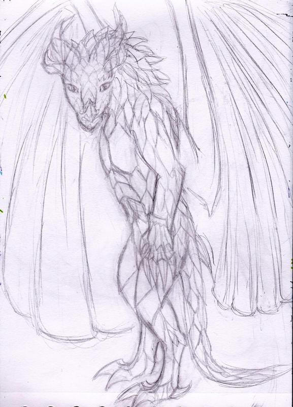 Dragons, chimères et créatures arc-en-ciel - Page 3 731238Timorsketchbipde