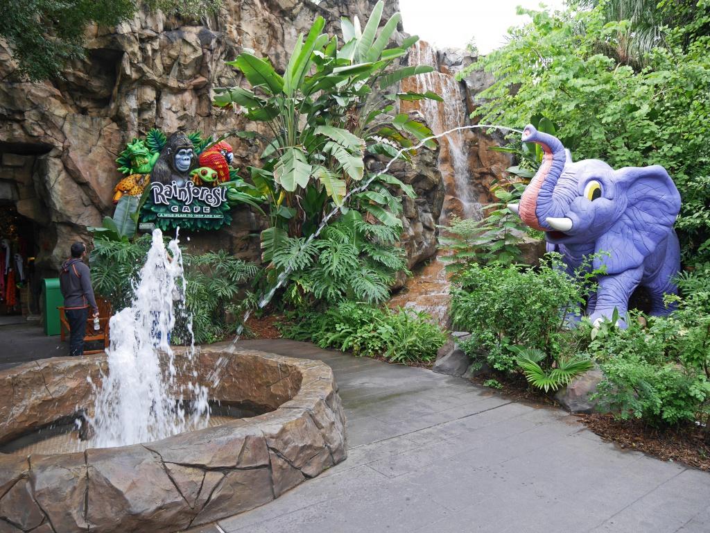 Une lune de miel à Orlando, septembre/octobre 2015 [WDW - Universal Resort - Seaworld Resort] - Page 6 737137P1030021