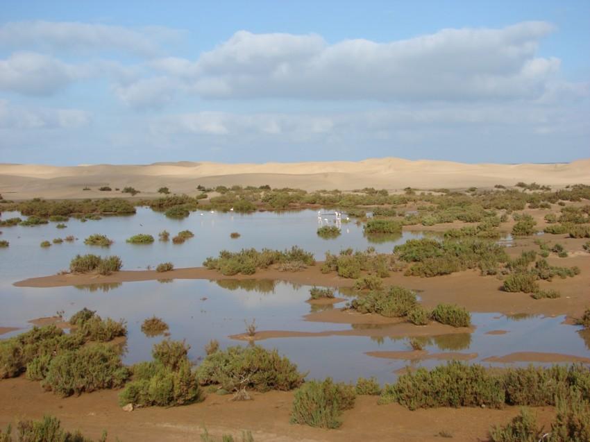 Le Grand Sud du Maroc - II 739624002