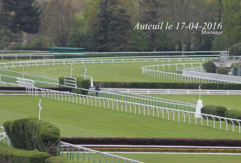 Photos Auteuil 17-04-2016 740686IMG9943
