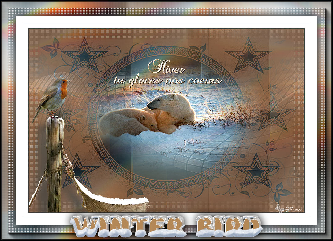 Oiseaux d'hiver (PSP) 741770tagwinter