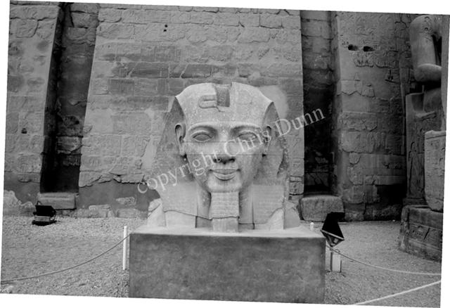 """La Révélation des Pyramides""  - Page 6 745952DunnRamsesJawline"