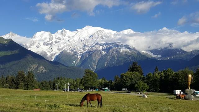 LC8 Rally western Alps - Stella alpina - Alpes Tour 2016  747401selectionalpesTour16