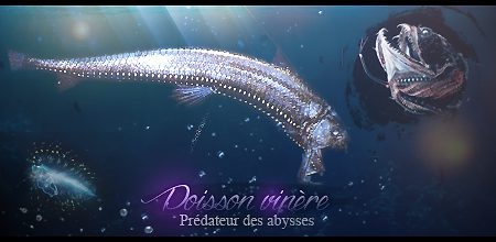 Concours de graphisme n°3 754539abysseOH
