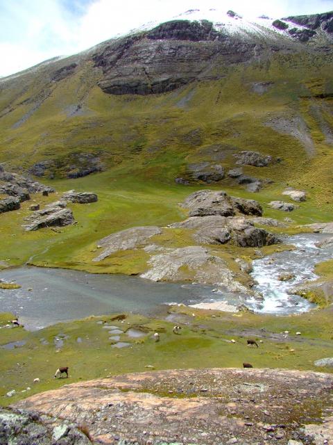 Les écosystèmes boliviens en photos... 757690autrepaysage4