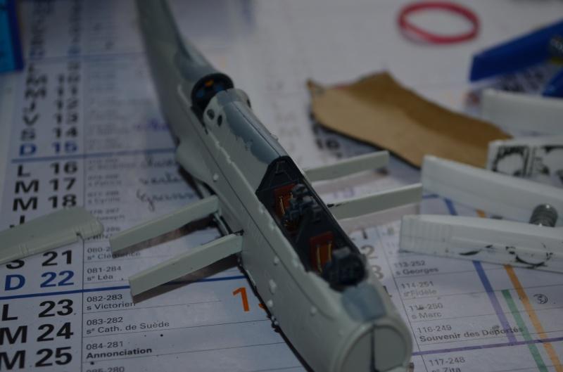 FINI [Revell] Fairey Gannet As mk 1/4 758923DSC0294