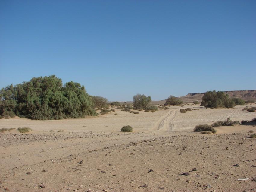 Le Grand Sud du Maroc - II 759073030