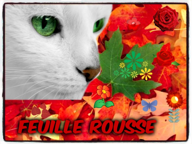 Feuille Rousse 764102pizapcomFeuilleRousse