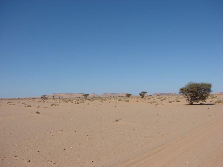 Le Grand Sud du Maroc - II 764806096