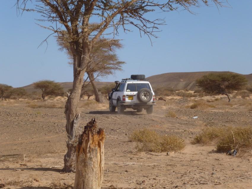 Le Grand Sud du Maroc - II 764932068