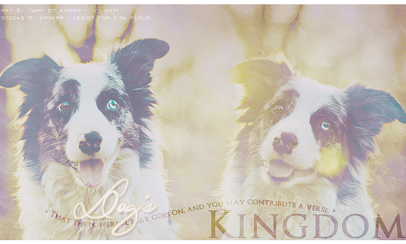 Dog's Kingdom 765087DSK